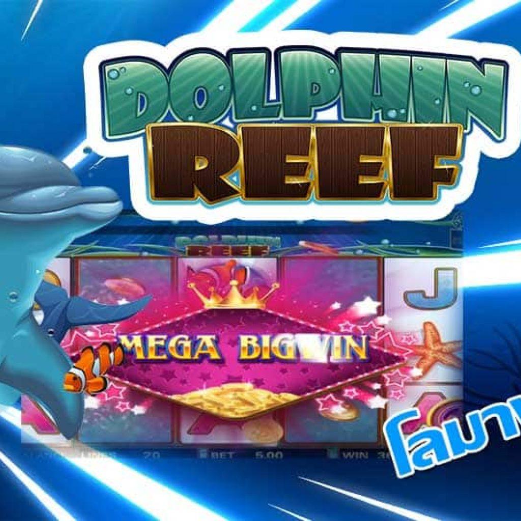 dolphin reef slot